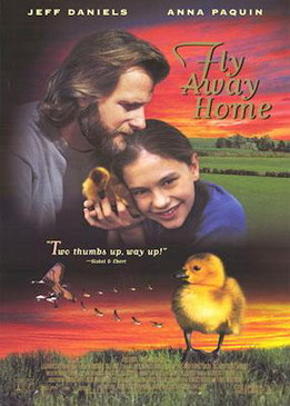 Летите домой (Fly Away Home)