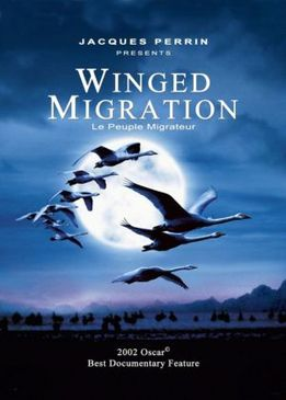 Птицы (Winged Migration)