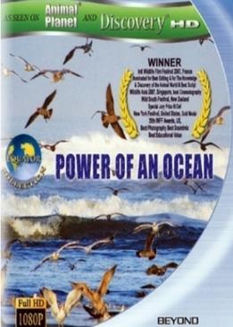 Сила океана