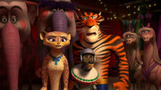 кадр из фильма Мадагаскар 3 (Madagascar 3: Europe's Most Wanted) - 9