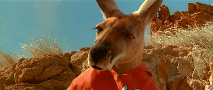 смотреть про кенгуру мультик