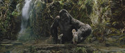 an in depth review of the plot and thee of classic film king kong King kong is a 2005 epic monster film which is a remake of the 1933 and 1976 films of the same name the film was released on december 14, 2005 and made an opening of $501 million.