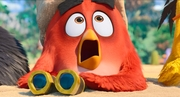 кадр из фильма Angry Birds 2 в кино (The Angry Birds Movie 2) - 1