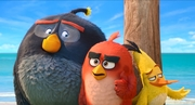 кадр из фильма Angry Birds 2 в кино (The Angry Birds Movie 2) - 2