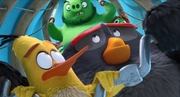 кадр из фильма Angry Birds 2 в кино (The Angry Birds Movie 2) - 4